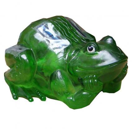 Happy welcoming frog
